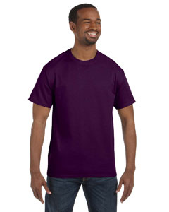 Winterberry 6.1 oz. Tagless® T-Shirt