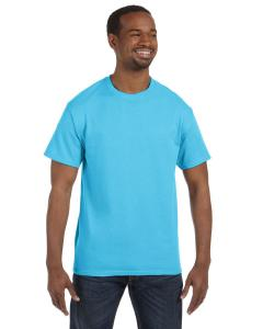 Blue Horizon 6.1 oz. Tagless® T-Shirt