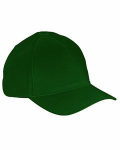 Forest 5-Panel Brushed Twill Cap