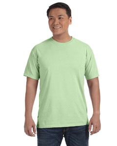 Celery Adult Heavyweight RS T-Shirt