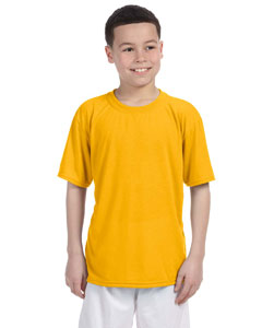 Gold Performance® Youth 4.5 oz. T-Shirt